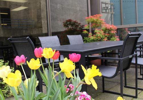Il patio della scuola